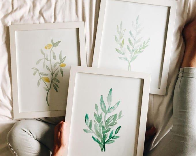 Greenery set (3) wall art prints