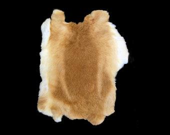 aed02ec07d1c6 Fawn Rabbit Fur Pelt, Genuine Rabbit Fur, Ethically sourced natural fur  hide, Ginger Rabbit Pelt, Caramel Rabbit Fur, Golden Wheat