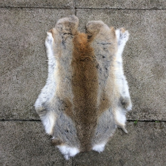 1 Tanned Russian Grey Squirrel skin hide/>COMBINE SHIPPING