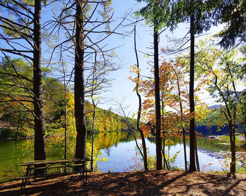 Autumn foliage peak color Emerald Lake State Park East image 0