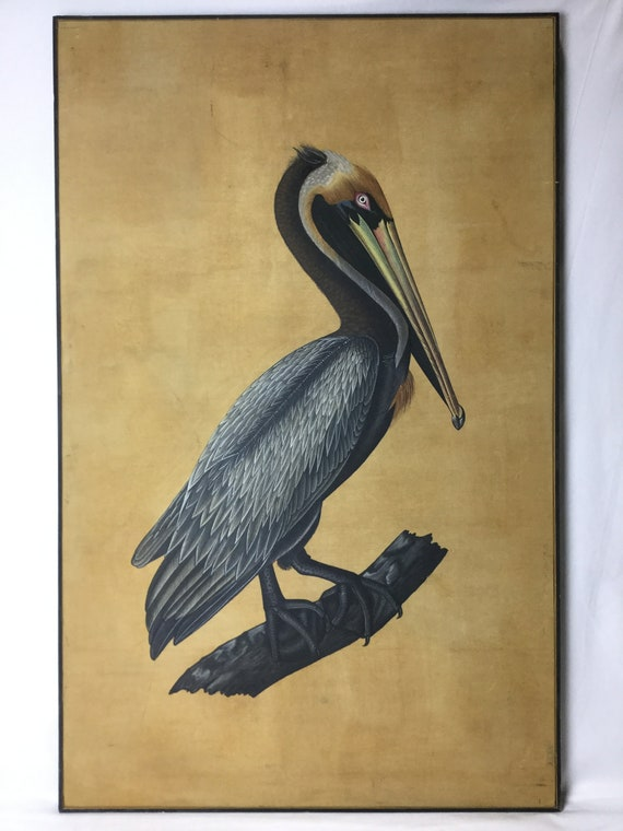 Ca. 1960s Birds Of America Audubon Style Original Painting Of a Pelican on Silk in Acrylic and Watercolor John Hopkins Collection