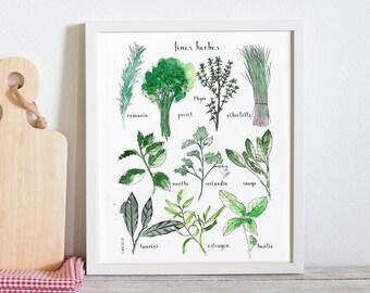 Fresh Herbs Poster - (white cardstock)