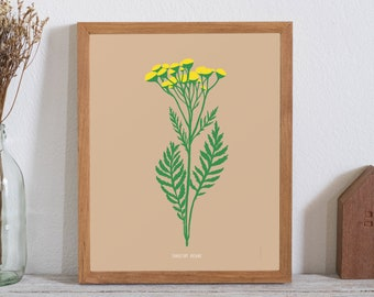 Common Tansy Poster - bad weed series (11X14 inches) floral print
