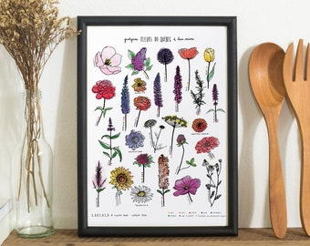 Québec Flowers Poster (white cardstock, 11X14 inches) - Local flower print
