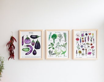 CUSTOMIZABLE TRIO of prints - (white cardstock, 11X14 inches) - Botanical, kitchen wall decoration
