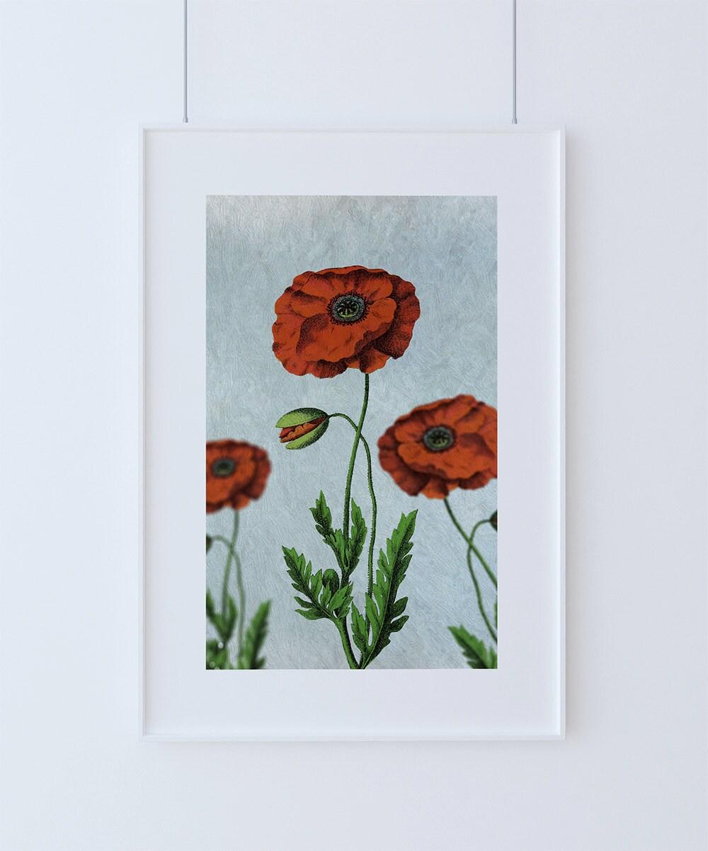 Poppy decor Poppy art Poppy vintage botanical print Poppy