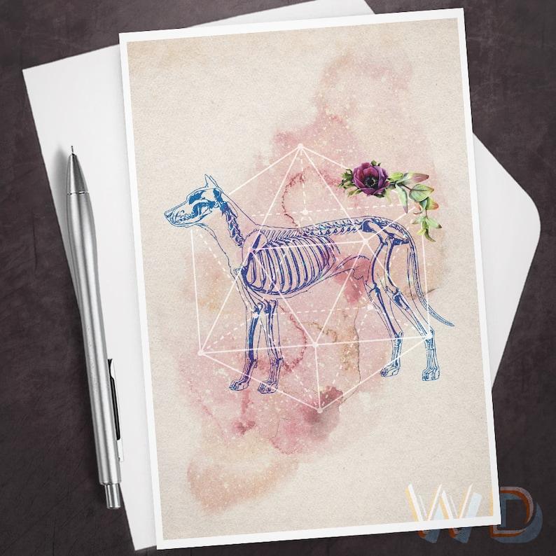 Anytime Greeting Card Sacred Dog Dog Skeleton Sacred image 0