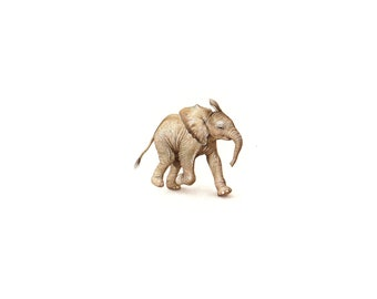 PRINT of watercolor miniature painting. Baby Elephant