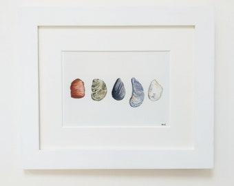 "REDUCED* Rock & shell art, Fine Art Giclée Print  8 X 10"" mounted by TheWildThingsArt"