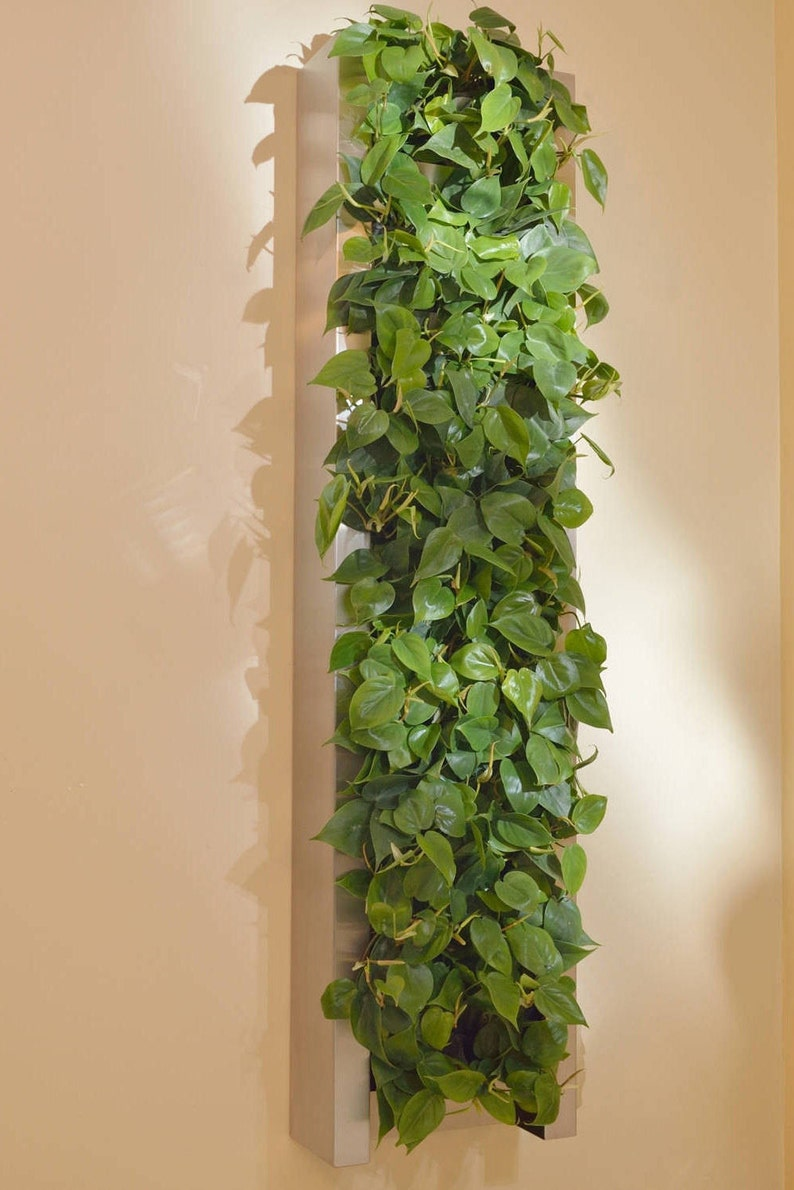 14' x 58'' stainless steel living wall image 0