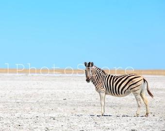 Zebra Nursery Wall Art, Animal Photography, Zebra Decor, Botswana Photos, African Wildlife, Wild Nature Photography, African Photography