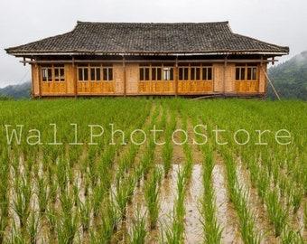 Chinese House Photo, Rice Field, China Photography, Asia Photography, China Pictures, China Poster, Chinese Wall Art, Travel Photography