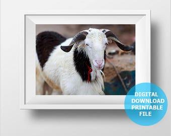 Goat Photo Download, Goat Prints Digital, Goat Photography, Goat Picture, Animal Photography, Goat Wall Art, Printable Goat, Children Decor