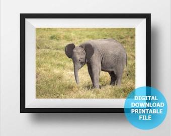 Baby Elephant, Digital Download, Kenya, Animal Photography, Elephant Photo, Wild Nature Photography, Prints Digital, Printable Nursery Decor