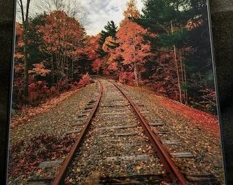 Train Tracks Through New England Foliage