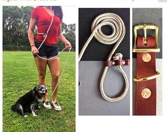 BestFriend Hands Free Leash Brown Tan and White/Brown Leather Collar Combo