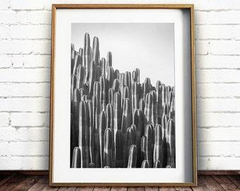 Black and White Cactus Print, Cactus Wall Art, South Western Print, Southwestern Decor, Printable Art