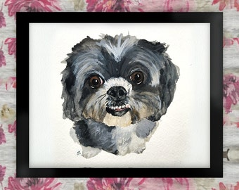 Coco the Shih Tzu Watercolor Art Print