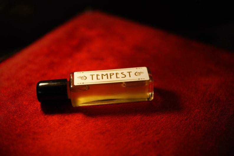 TEMPEST in a Bottle natural Perfume  unisex perfume image 0