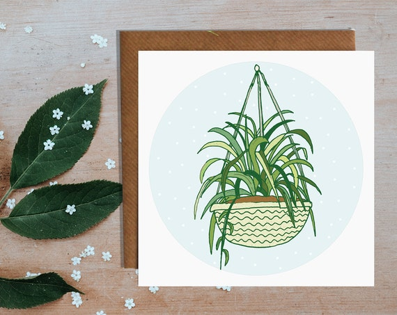 Hanging Plant Greetings Card