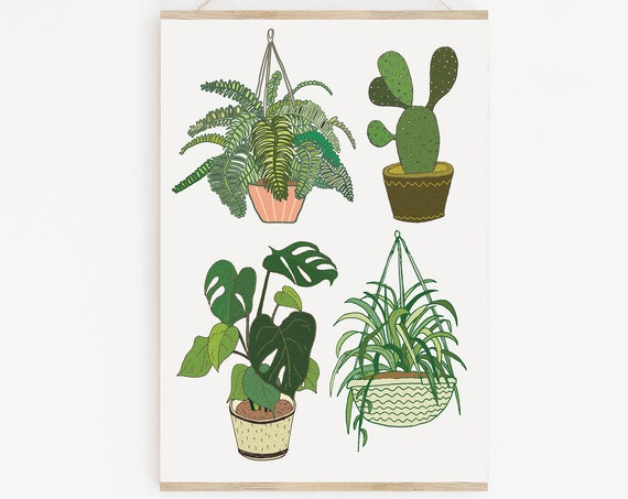 Potted Plants A4 Print