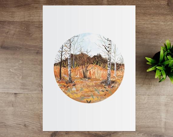 Swedish Birch Trees Giclee Art Print