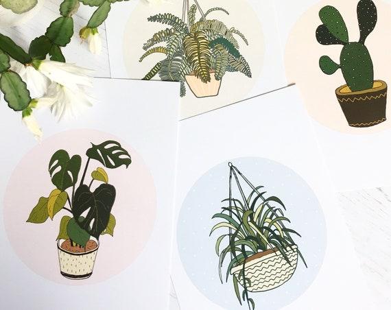 Set of 4 Mini Plant Illustration Prints