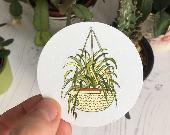 Hanging Plant Paper Sticker
