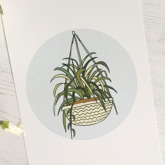 Hanging Plant Illustration Mini Print