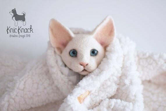 Igła Filcowana Broszka Z Wełny Devon Rex Biały Kot Twarz Etsy