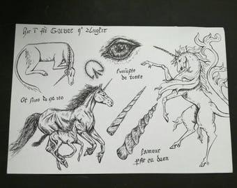 Une étude illustratif zoologique de licornes, A3 stylo et encre impression