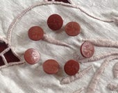 7 Vintage Vegetable Ivory Buttons. Tagua Nut. Chocolate Milk.
