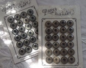 Vegetable Ivory Buttons on Orignal Cards. Paris. Fabrication Francaise.