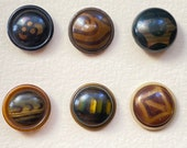 Celluloid Buttons. Set of 6. Small Collection. (No 1)