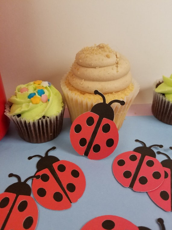 Lady Bug Baby Shower Lady Bug First Birthday Lady Bug