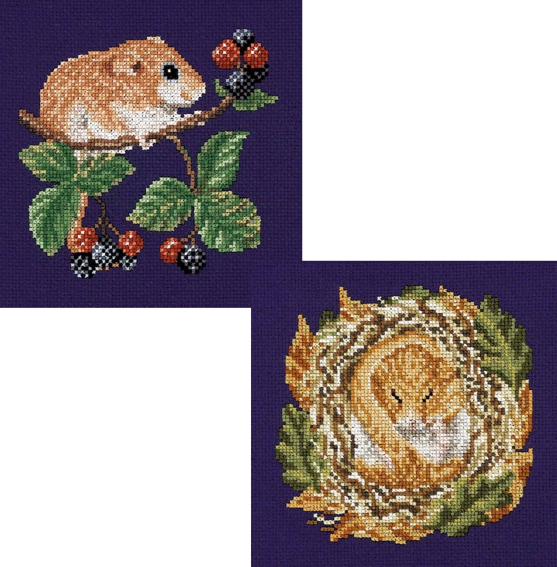 Cross Stitch design 'Dormouse Feasting and Sleeping' image 0
