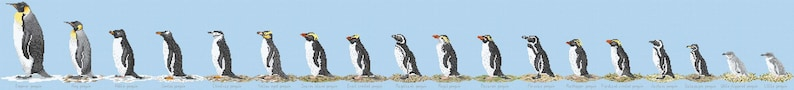 Cross Stitch chart download 'Penguin Paradise' image 0