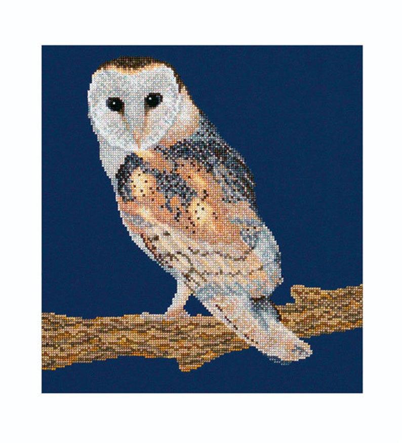 Cross stitch Download 'Barn Owl' image 0