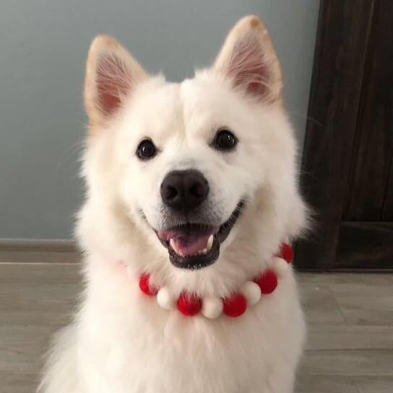 Sunset Sorbet Felted Pompom Pet  Dog Accessories  Dog Necklace  Pom pom Necklace  Pastel COTTON CANDY Pompom Necklace