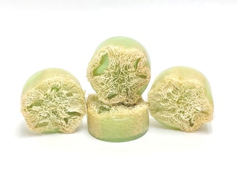 GINGER LIME | natural loofah sponge soap | phthalates - detergent and paraben Free | The Graceful Rabbit