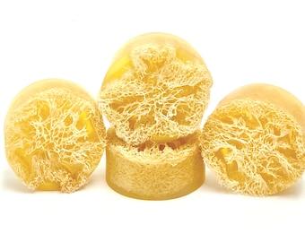 LEMON ZEST | natural loofah sponge soap | phthalates - detergent and paraben Free | The Graceful Rabbit