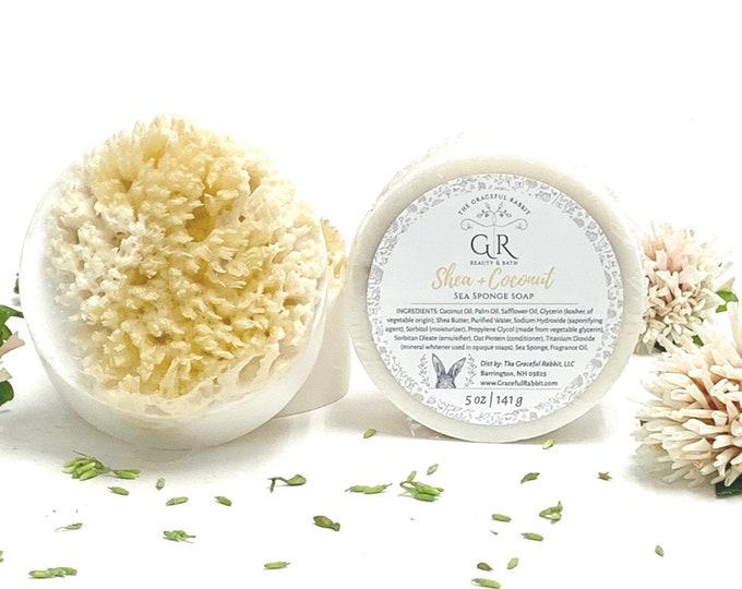 SHEA + COCONUT   sea sponge soap   Shea Butter   Natural Wool Sea Sponge    The Graceful Rabbit