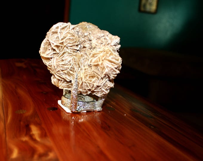 Desert rose on a stand.