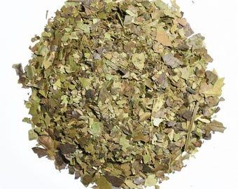 GUAYUSA | Organic Herbal Tea | Loose Leaf and Tea Bags | Tea Tins | Eco-Friendly Packaging