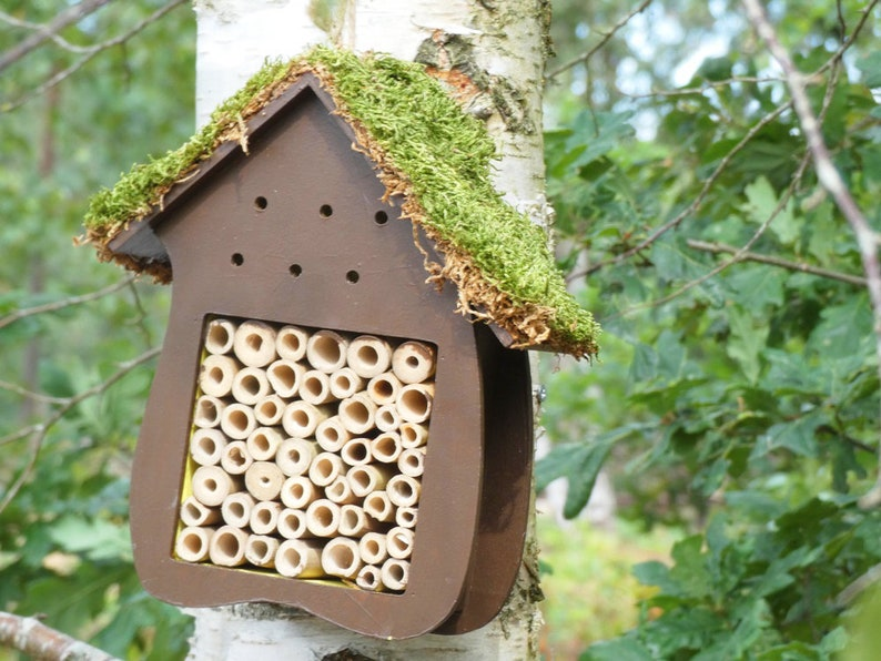 Natural Bee Hotel Insect House Outdoor Garden Deco Hanging Eco Standard Hotel