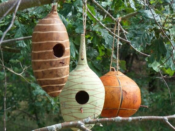 Gourd Birdhouse A Handmade Natural Beauty Green