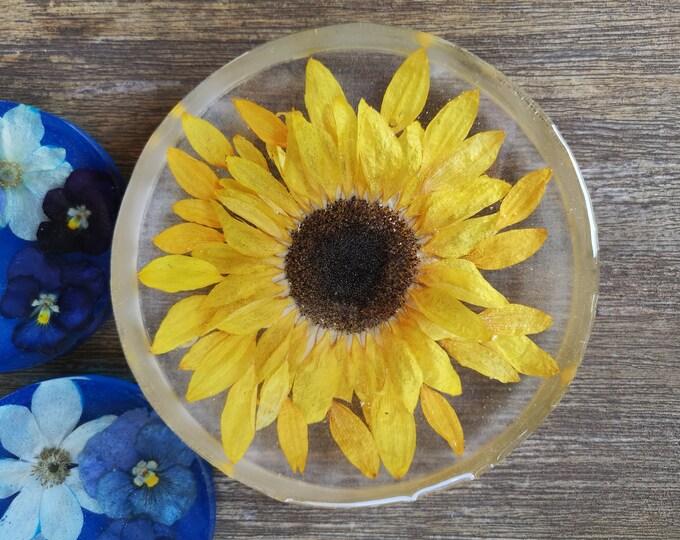 Sunflower in resin