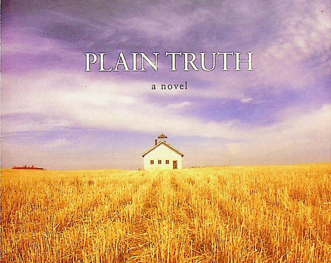 Plain Truth by Jodi Picoult (Trade Paperback: Mystery, Suspense) 2001