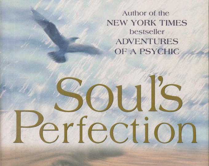 Soul's Perfection (Journey of the Soul's Service, Book 2)   (Softcover: New Age, Spiritual Growth) 2000