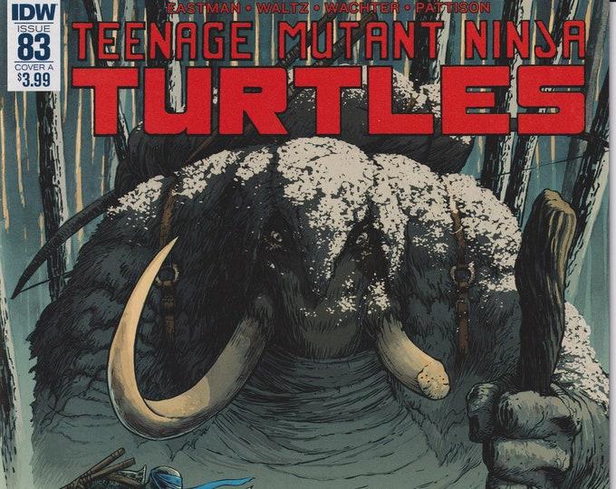 IDW 83 Cover A June 2018 First Printing Teenage Mutant Ninja Turtles (Comic)
